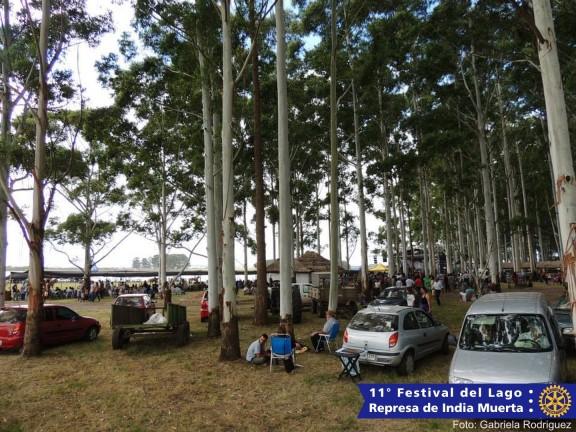 Festival2014-00017