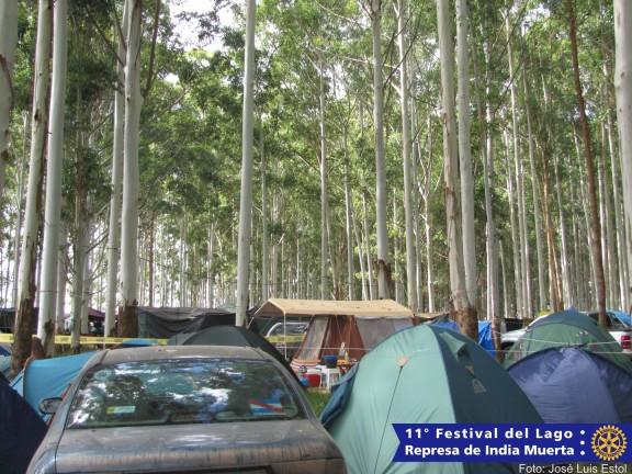 Festival2014-00110